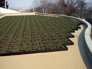 屋上植栽 工法画像