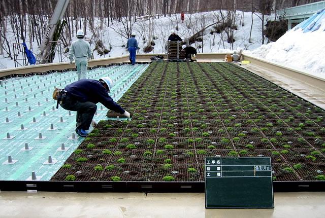 屋上植栽 工法詳細画像